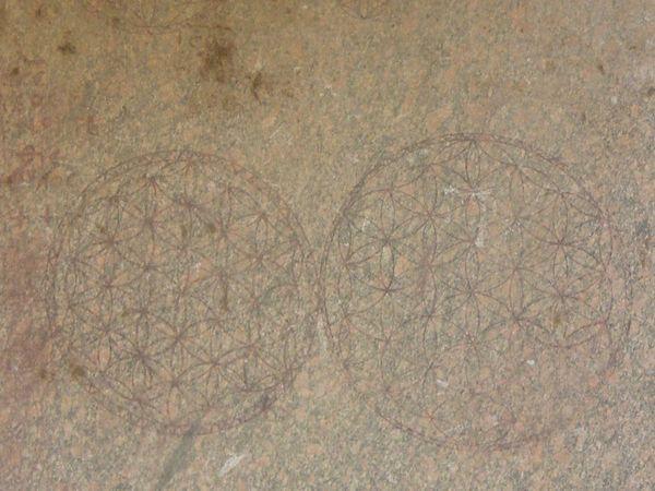 Flower-Of-LIfe-Enscriptions-On-Pillar-At-Abydos